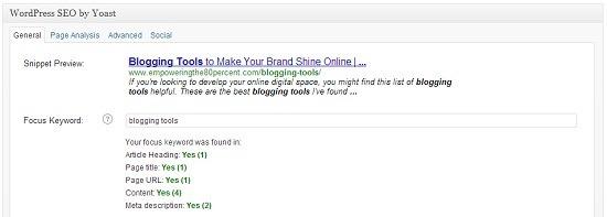 WordPress SEO screen shot 1