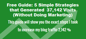 Free Guide: How to Increase Your Blog Traffic
