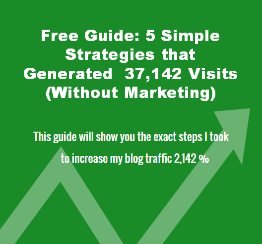 Guide-to-Increasing-Your-Blog-Traffic